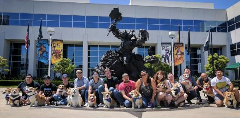 Blizzard's office dogs have to be good dogs and sign NDAs