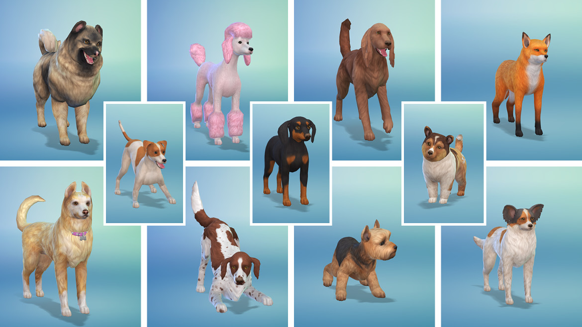 How To Breed Your Dog In Sims