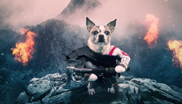 Video: You want Dog of War? You got it